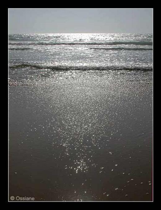Bulles d\\\'Air dans la Mer, Parcelles de Vie sur la Terre, Atomes d\\\'Oxygène Envolés, Grains de Lumière en Liberté.