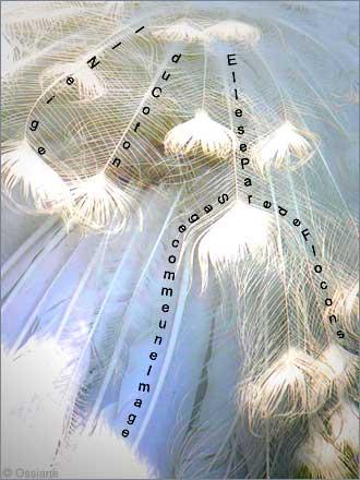 Il Neige du Coton, Elle se Pare de Flocons, Sage comme une Image.