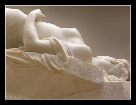 Un Torrent de Blanc, la Beauté en Mouvement, Lumière d'un Instant.