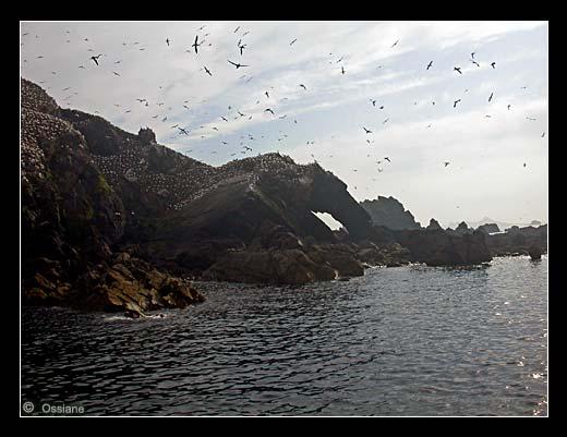 Paysage Fantastique, Univers Féériquee, Voyage Magnifique à l'île Rouzic.